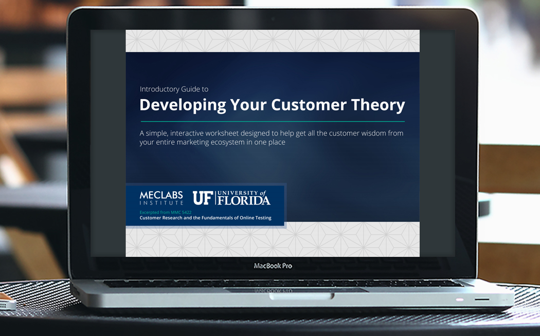 Guide to Developing Your Customer Theory