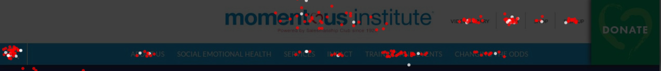Creative Sample Confetti heatmap of nonprofit website navigation