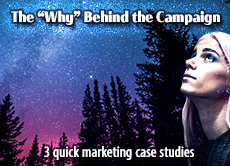"""The """"Why"""" Behind the Campaign: 3 quick marketing case studies show the impetus for website redesign, SEO, and social media campaigns"""