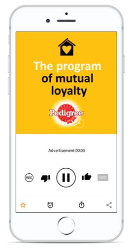 Creative Sample #2: Companion banner to interactive audio ad